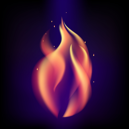 Red burning fire flame on black purple background. Illustration
