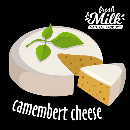 Camembert cheese. Fresh Camembert cheese and a slice with leaves. Italian, French cheese.
