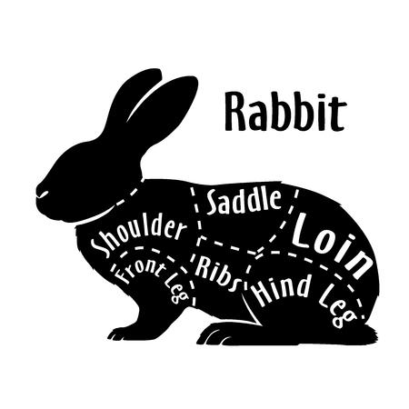 Cut of rabbit, diagram for butcher. Poster for butcher shop. Guide for cutting. Vector illustration.