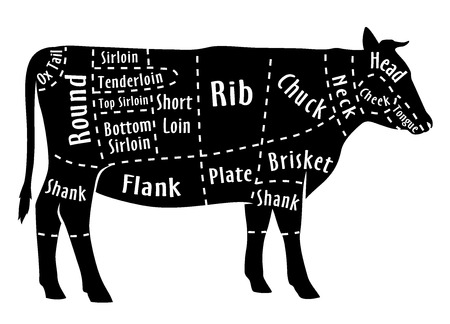 Cut of beef, diagram for butcher. Poster for butcher shop. Guide for cutting. Vector illustration.