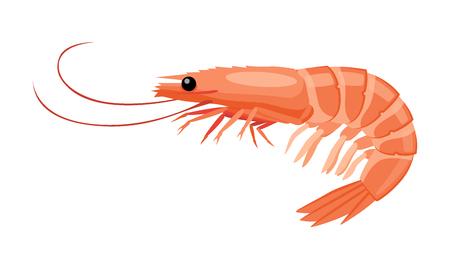 Shrimp icon in flat style, fresh sea food. Illustration