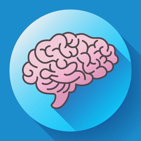 Icône du cerveau humain, symbole de l'intellect, de l'étude, de l'apprentissage et de l'éducation.