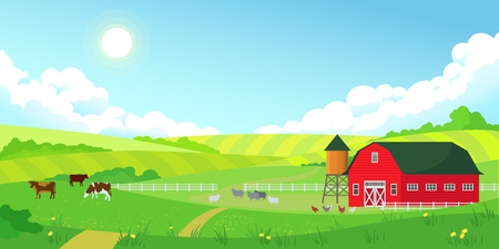 Kolorowy krajobraz lato farmy, błękitne jasne niebo ze słońcem, czerwona stodoła, stado krów, rolnictwo, ilustracja wektorowa płaski