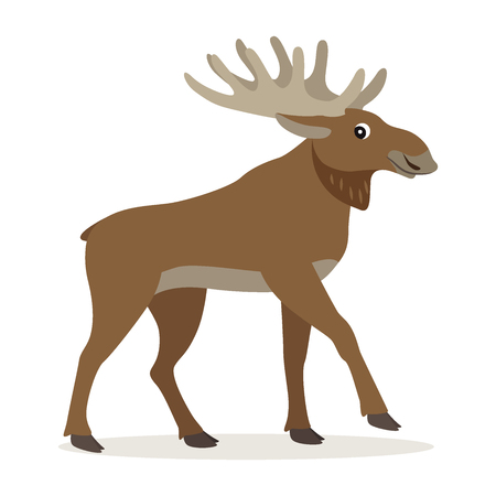 Cute forest animal, friendly moose with big horns, woodland beast, isolated on white background, vector illustration