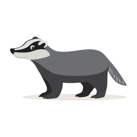 Icon of funny cute gray badger isolated, forest, woodland animal, vector illustration for children book or decoration