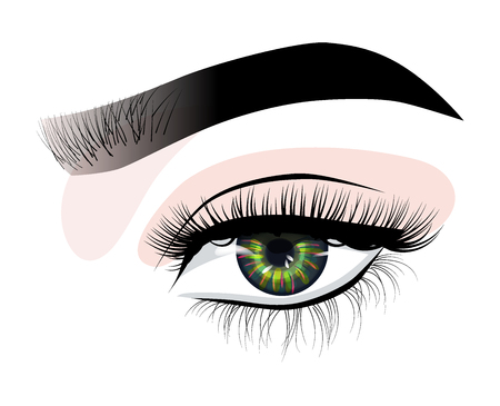 Hand-drawn womans luxurious eye with perfectly shaped eyebrows and full lashes. Eyebrow styling, eyelash extensions. Idea for business visit card, typography vector. Perfect salon look. Vector Illustratie