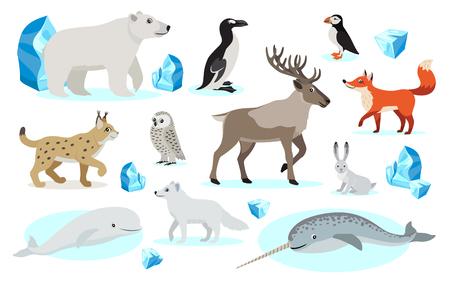 Set of polar animals icons, isolated on white background Illustration