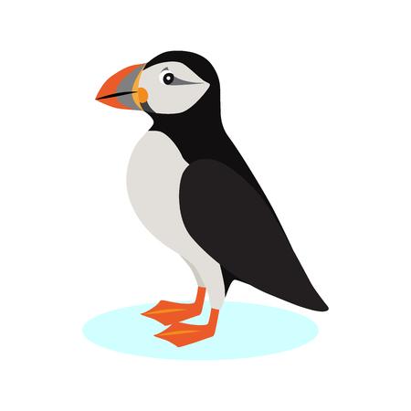 Icône de macareux moine, oiseau polaire avec bec coloré isolé sur fond blanc, espèces d'oiseaux marins, illustration vectorielle