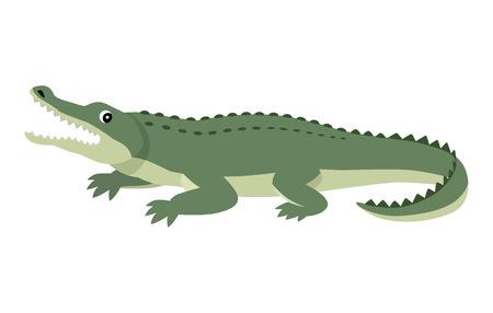 Simpatico alligatore verde simpatico, divertente animale selvatico, coccodrilli di cartoni animati, illustrazione vettoriale isolato su sfondo bianco