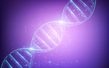 Wireframe DNA molecules structure mesh low poly consisting of points, lines, and shapes on dark purple background. Science and Technology concept. Illustration