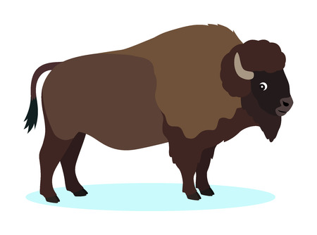 Wild brown bison, buffalo icon, isolated on white background Çizim