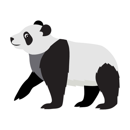 Cute wild animal, black and white fluffy panda icon, big kind bear, vector illustration isolated on white background Иллюстрация