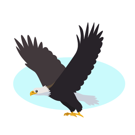Flying Bald eagle icon isolated on white background, predatory bird with white head and wide big wings, vector illustration Illustration