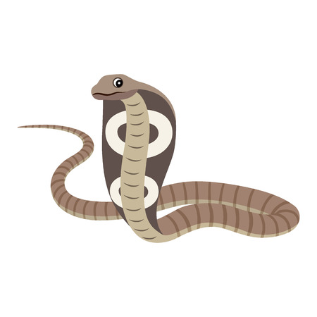 Dangerous wild animal, reptile, poisonous cobra icon, vector illustration isolated on white background
