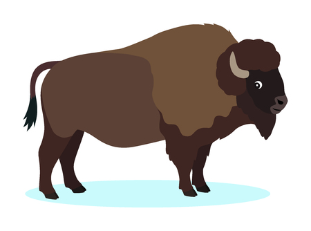 Wild brown bison, buffalo icon, isolated on white background, strong wild animal, vector illustration Illustration