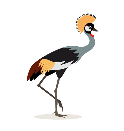 African animal, beautiful colorful crowned crane isolated on white background, exotic bird, vector illustration in flat style 向量圖像
