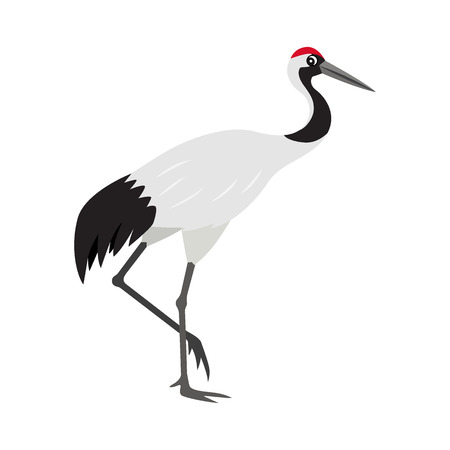 Friendly cute red-crowned or Japanese crane icon, colorful wild bird, vector illustration isolated on white background 向量圖像