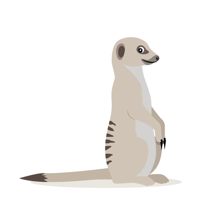 African wild animal, cute suricate, meerkat icon isolated on white background, vector illustration in flat style
