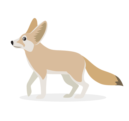 African animal, cute fennec icon isolated on white background, small funny fox, vector illustration in flat style 向量圖像