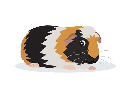 Nettes freundliches Meerschweinchensymbol einzeln auf weißem Hintergrund, kleines flauschiges Nagetierhaustier, Vektorillustration im flachen Stil