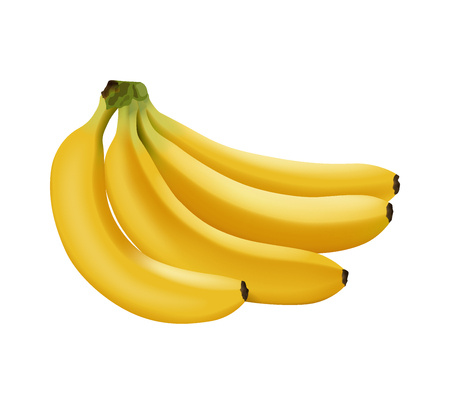 Realistic branch of bananas isolated, bright yellow sweet fruit, icon, vector illustration