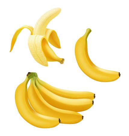 Zestaw realistyczny wektor banan, gałąź bananów, pół obranych bananów i pojedynczy banan na białym, jasny żółty słodki owoc, ikona banana, ilustracji wektorowych