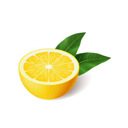 Realistic lemon with green leaf half sliced, sour fresh fruit, bright yellow peel, lemon vector illustration isolated on white background  イラスト・ベクター素材