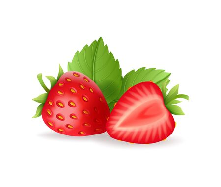 Realistic sweet strawberry set with green leaves, fresh red berries, isolated on white background vector illustration