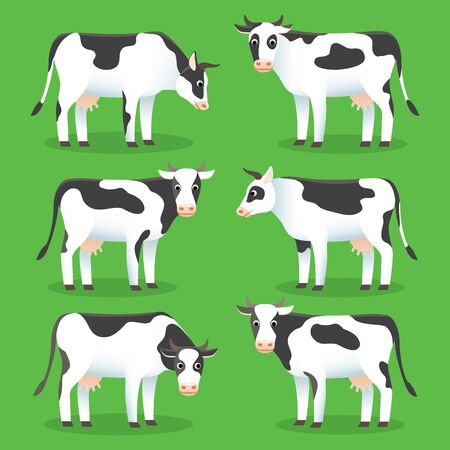 Farm animals cows isolated on green background. Set of white and black cows in flat style Illustration