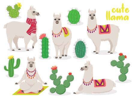 Set of cute llamas in different poses, in scarf and in yoga pose, lotus pose, desert with cactus, vector illustration