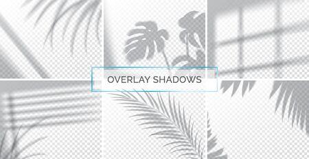 Set of shadows, overlay effects mock up, window frame and leaf of plants, natural interior light, vector illustration Reklamní fotografie - 129393994