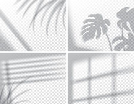 Set di ombre, effetti di sovrapposizione mock up, cornice della finestra e foglia di piante, luce interna naturale, illustrazione vettoriale Vettoriali