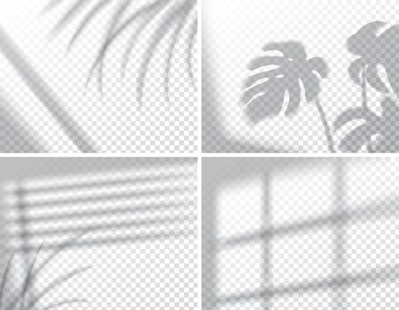 Set of shadows, overlay effects mock up, window frame and leaf of plants, natural interior light, vector illustration