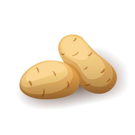 Fresh potatoes in peel icon isolated, farm organic healthy food, vegetable, vector illustration