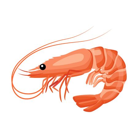 Shrimp icon in flat style, fresh sea food. Isolated on white background. Vector illustration. Иллюстрация