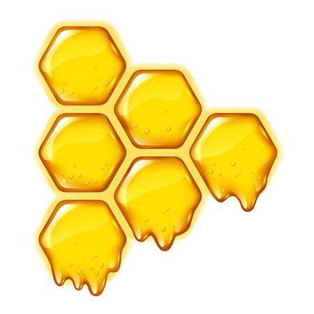 Yellow honeycombs with flowing honey or essence isolated, design for medicine , product packaging, vector illustration