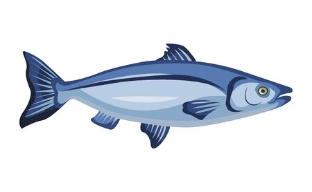 Raw whole salmon icon isolated on white background, fresh fish, product, healthy food, vector illustration