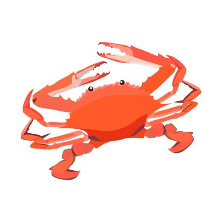 Red cooked crab icon isolated on white background, fresh seafood, healthy tasty food, vector illustration