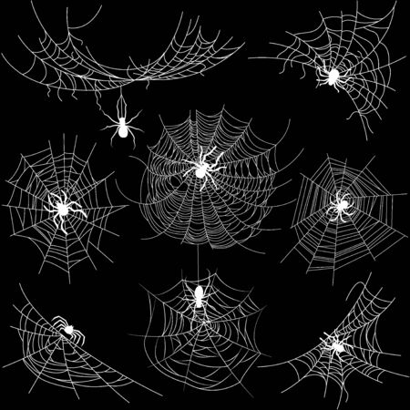 Set of spider web of different shapes with white spiders isolated on black, Halloween decorations, vector illustration