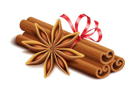 Realistic spices for Christmas mulled wine or coffee drinks, cinnamon sticks and anise star isolated on white background, vector illustration