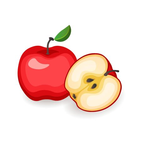 Red whole and cut apples on white background. Organic vitamin fruit, vector illustration in flat style. Healthy diet concept