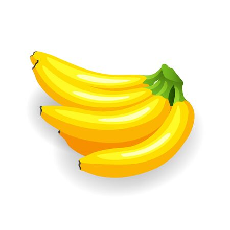 Bunch of ripe bananas, isolated on white. Yummy tropical fruits, vector illustration in flat style. Eat healthy concept