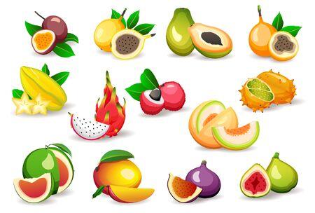 Set of various exotic fruits isolated on white background, flat style vector illustrations. Vegetarian food concept Ilustração Vetorial