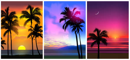Summer tropical beach backgrounds set N4 with palms, sky sunrise and sunset. Summer party placard poster flyer invitation card. Summertime, vector illustration. 向量圖像