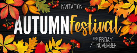 November autumn festival announcement, invitation banner design, template with fallen leaves, realistic colorful foliage with text 向量圖像