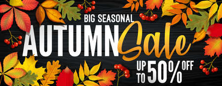 Advertising banner about Autumn Sale at the end of season with bright fall leaves. Invitation for shopping with 50 percent off. Trendy style, dark red background. Vector illustration