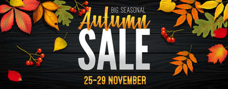 Advertising banner about Autumn Sale at the end of season with bright fall leaves. Invitation for shopping with 50 percent off. Trendy style, dark red background. Vector illustration 版權商用圖片 - 153611917