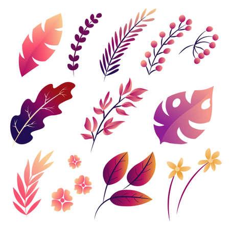 Big Vector set of tropical leaves, fall isolated illustration. 版權商用圖片 - 155214852