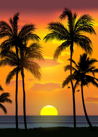 Summer tropical beach background with palms, sky sunrise and sunset. Summer party placard poster flyer invitation card. Summertime, vector illustration. 版權商用圖片 - 155514244