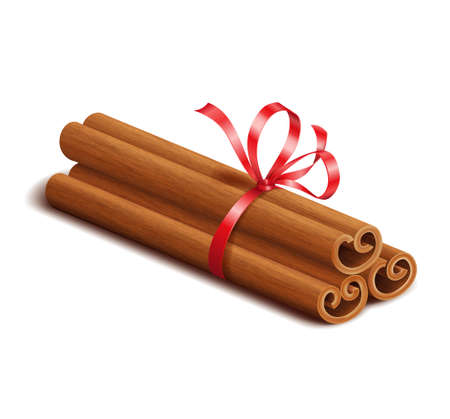 Realistic spices, cinnamon sticks with red bow isolated on white